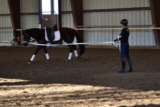 Instructor Annie Sweet analyzes the movement of an older Morgan mare during her session. Photo by Lorraine Jackson