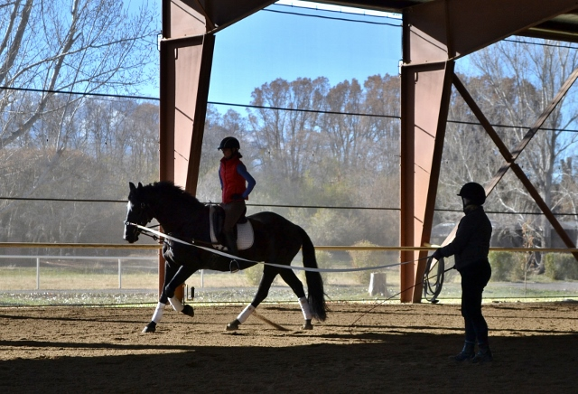 Sarah Geikie lunges demo rider Jamie Ringger at the USDF Instructor Certification Clinic. Photo by Lorraine Jackson.