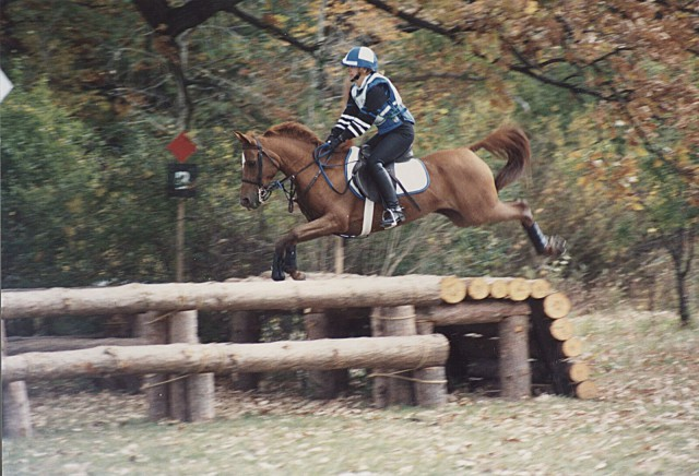 Evergreen Farm H.T. (October 1991): Giving a table plenty of room. What the photo doesn't show is the one-stride to a vertical! Photo by Bernadette Hare Chvoy.