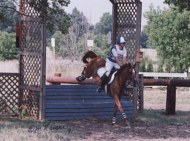 Wayne DuPage June H.T. (1991): Training level. Photo by Margaret Kaiser.
