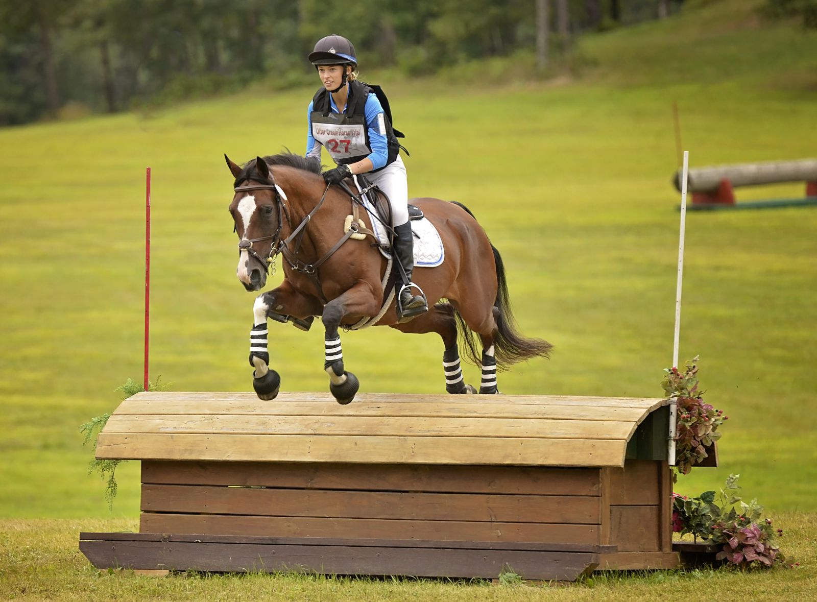 A Horse Of A Different Color Sierra Summit Eventing Nation Three Day Eventing News Results Videos And Commentary