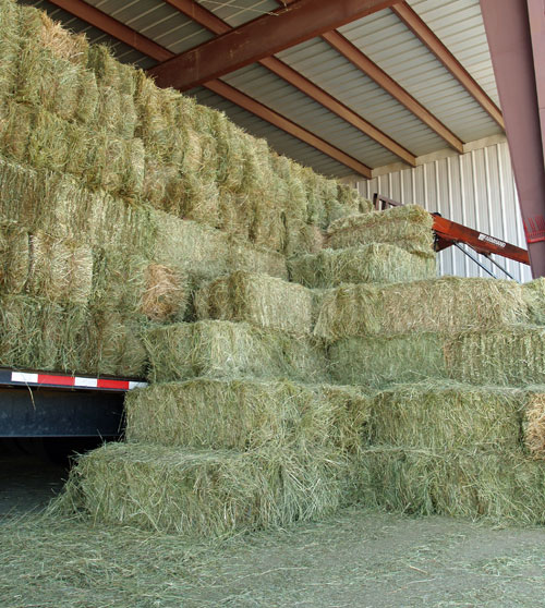 Have you planned for your winter hay purchases yet? Photo from jandjhayfarms.com.
