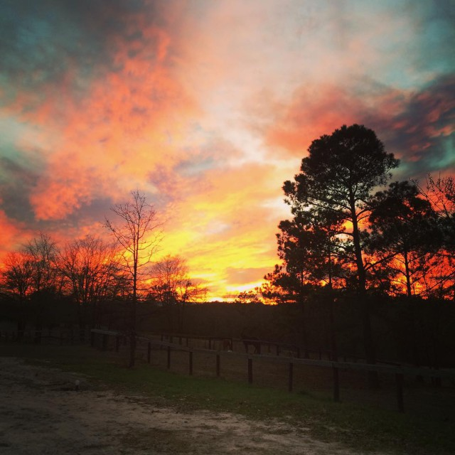 Aiken sunsets! Photo by Chris Talley.