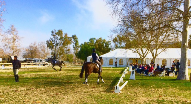 Three & four year olds in the ICP USEA symposium with David O'Connor. Photo courtesy of Bea Di Grazia.
