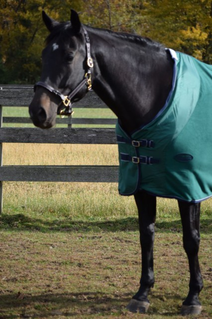 The Anti Static Fleece Cooler features a nylon lining in the shoulder are in order to reduce rubbing and stretching. Photo by Lorraine Peachey