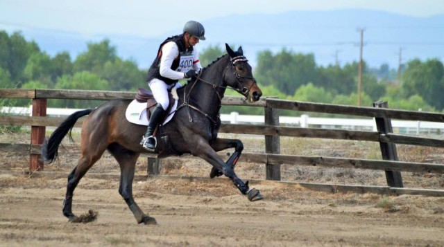 Earl McFall and Let's Go DF at the 2015 West Coast Young Event Horse Championships. Photo by Sally Spickard.
