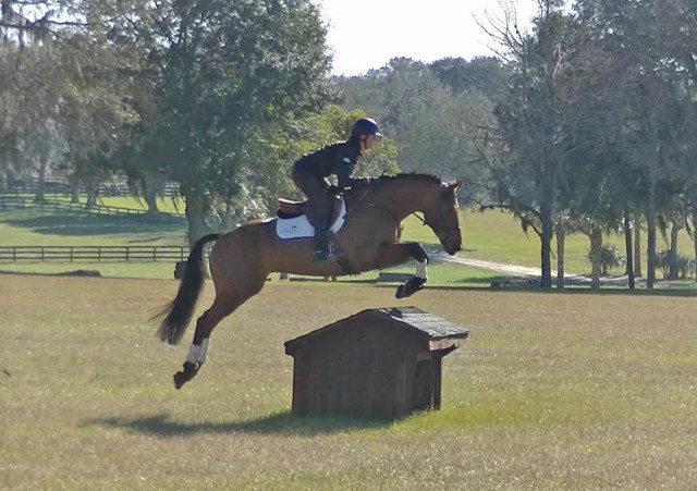 Lauren Kieffer and D.A. Duras cross country schooling in Ocala. Photo by David Frechette.