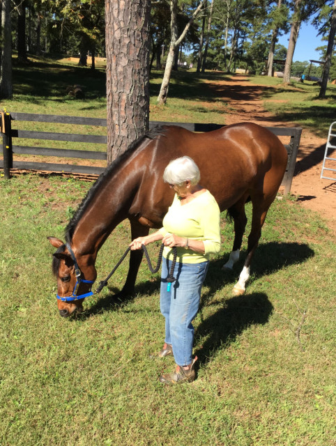 Julie's mom, Pat, grazing Sparkle at her new home in Georgia. Photo courtesy of Julie Richards.