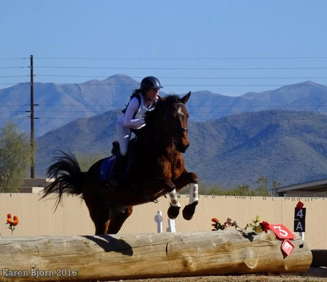 Jamie Jennings riding her Mustang, The Mighty Thor, at Carefree Farms' mock One-Day Horse Trials in Phoenix Arizona. Photo by Karen Bjorn