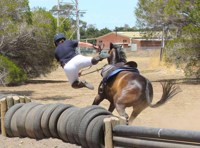 Dating a horse girl reddit