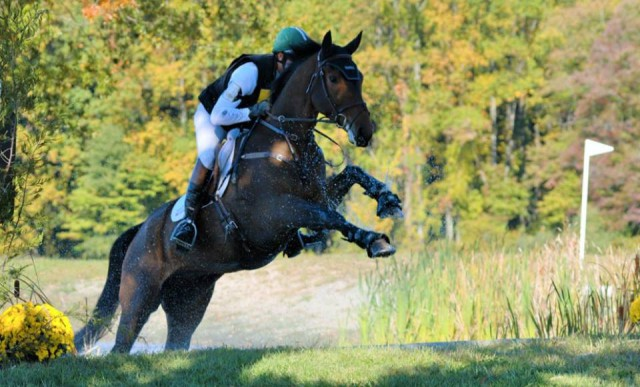 Will Coleman and Don Dante at the East Coast Young Event Horse Championships at Fair Hill. Photo by Sally Spickard.
