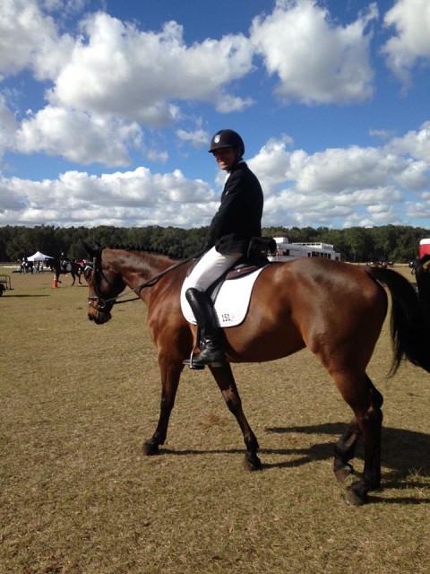 Our USEF Eventing Team Show Jumping Coach Silvio Mazzoni came to the dark side this weekend and completed Training at Ocala! Photo from Hannah Sue Burnett
