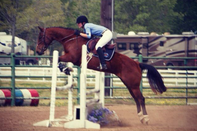 Brownie and I at our first ever novice CT. We were eliminated because I went off course … oops!
