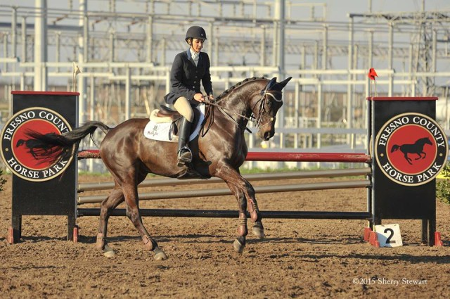 Frankie Theriot Stutes and Chatwin at Fresno County Horse Park. Photo by Sherry Stewart.