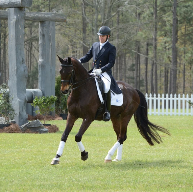 Carolina spectators and out-of-the-tack riders enjoyed a special treat today when John Zopatti brought out Will Faudree's retired four-star partner Pawlow to show off some Grand Prix dressage movements! Photo by Jenni Autry.
