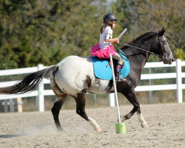 2015 Pony Club camp mounted games practice. Photo courtesy of Anne Peters.