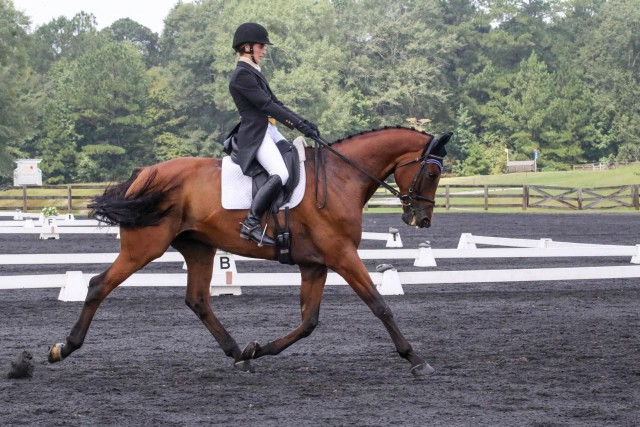Lexi and Charlie in the dressage. Photo by Lively Manor Photography.