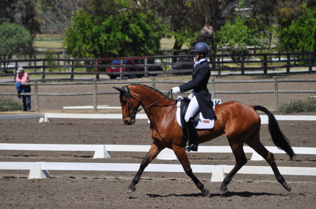 Tamie Smith and Dempsey strutting their stuff in the 3*. Photo by Lisa Takada.