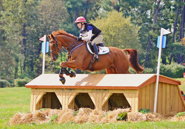 Kelly Prather and Blackfoot Mystery at the 2014 Plantation Field CIC3*. Photo by Jenni Autry.