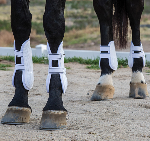 The Professional's Choice Pro Performance Pro Mesh TPU Show Jump Boots are available in black or white. Photo courtesy of Professional's Choice.