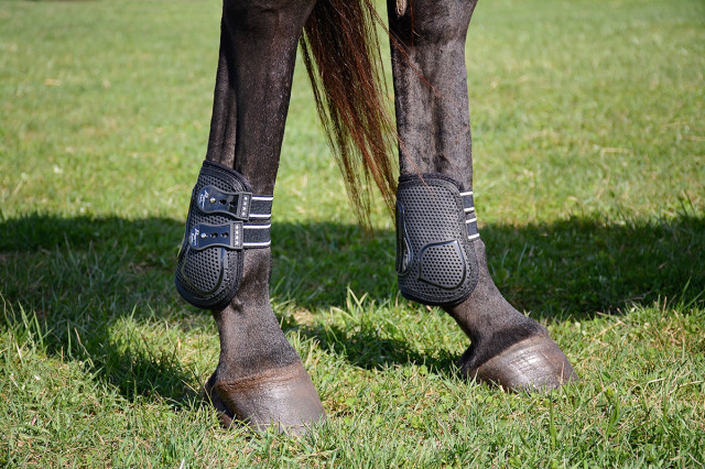 Mia models the Pro Performance Pro Mesh TPU Show Jump Boots. Photo by Jenni Autry.