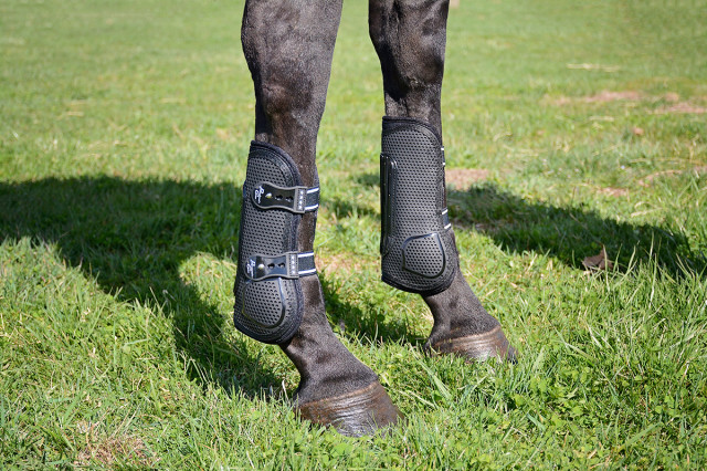 Mia models the Pro Performance Pro Mesh TPU Show Jump Boots from Professional's Choice. Photo by Jenni Autry.