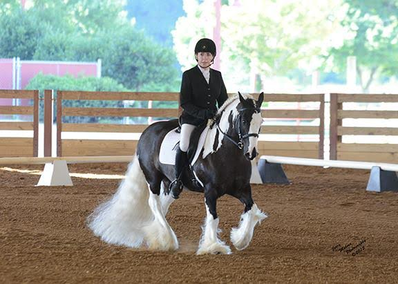 Kate Reed and Tabby at the Feathered Classic. Photo by Jerry Mohme.