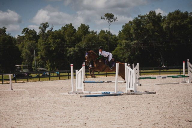 Show JUmping. Photo By Jessie Hartford