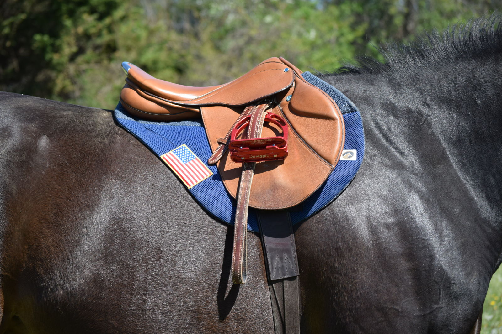 Product Review: EcoGold Secure XC Saddle Pad | Eventing