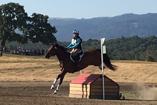 Delaney Vaden and RedRox Jazzman are the new leaders in the Prelim Challenge Rider Division. Photo by Ann Haller
