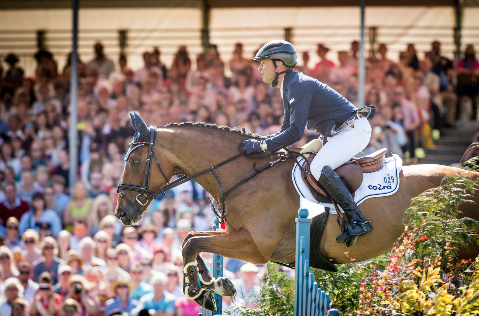 Badminton Horse Trials Show Jumping Open Thread Michael Jung Wins Rolex Grand Slam Eventing Nation Three Day Eventing News Results Videos And Commentary