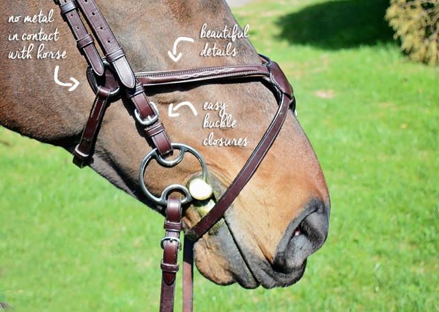bridle details