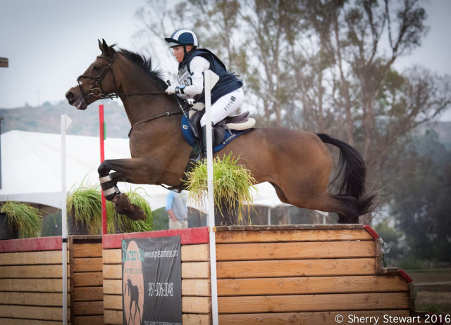 Hawley Bennett-Awad on her new mount JollyBo winning the open preliminary.