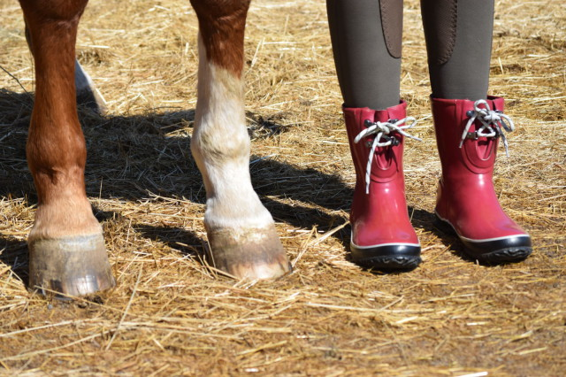 the boots are 100% waterproof...which means no worries when I step in puddles around the paddock or am bathing my ponies. Photo by Lorraine Peachey