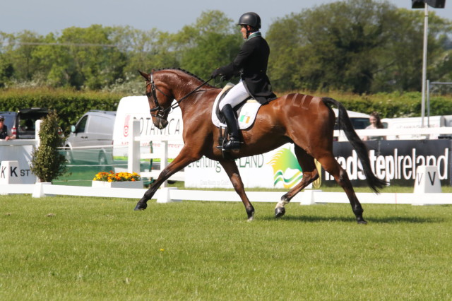 Austin O'Connor and Kilpatrick Knight currently lead the CIC3*. Photo by Prime Photography.