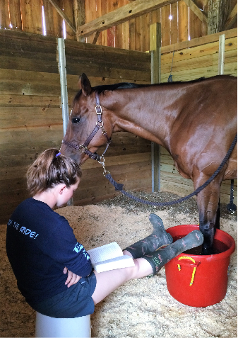 Grace catches up on summer reading for AP English while icing Truffle. Photo courtesy of Grace Mitchinson.