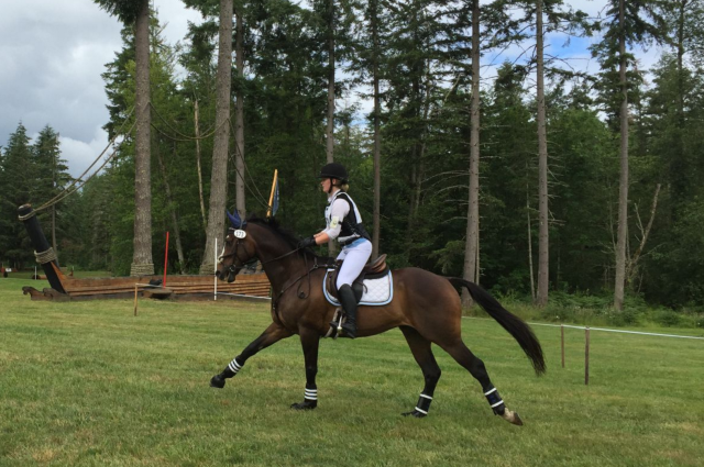 Junior Novice competitor Emilie Everett and Yankee Bay at Aspen Farm H.T. Photo by Cadence Michel.