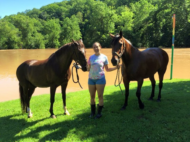 The horses after the swim. Photo courtesy of Amber Long.