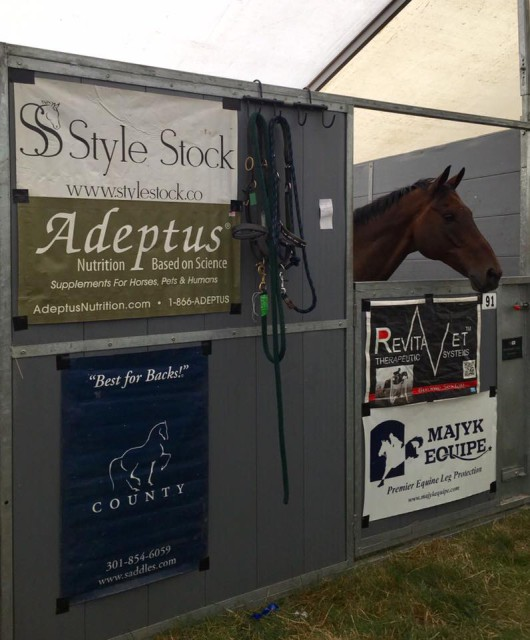 Rise Against is ready and excited to be at Burghley! Photo via Bunnie Sexton's FB page.