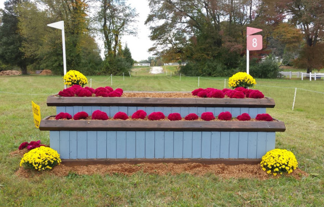 Beautifully decorated jumps need to stay that way for a whole week! Photo by Holly Covey.