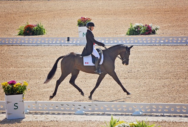 Jessica Phoenix and A Little Romance, first in the dressage arena at the 2016 Rio Olympic Games. Photo by Jenni Autry.