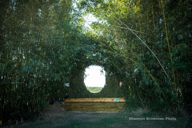 Fence 10: The Bamboo Keyhole. Photo by Shannon Brinkman.