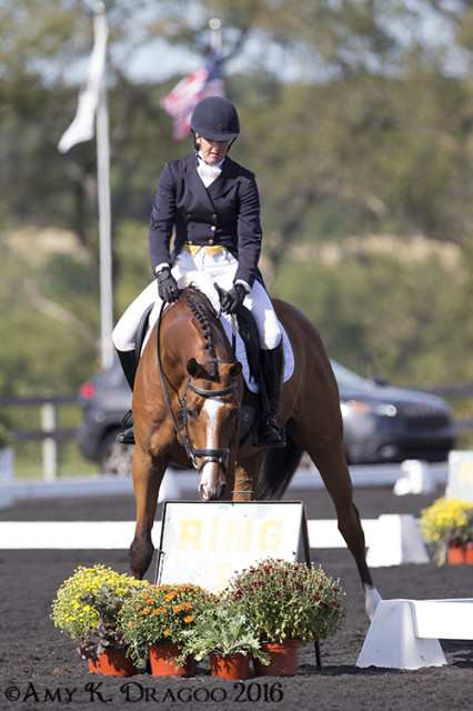 Lord Willing checks out the decorations before he and Allison Springer head down centerline. Photo by Amy Dragoo.
