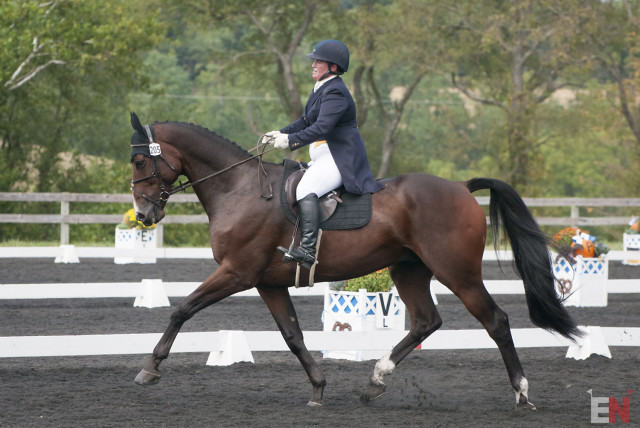 Gina Economou and Calidore on their way to scoring a personal best dressage test, with a jump saddle! Photo by Leslie Threlkeld.