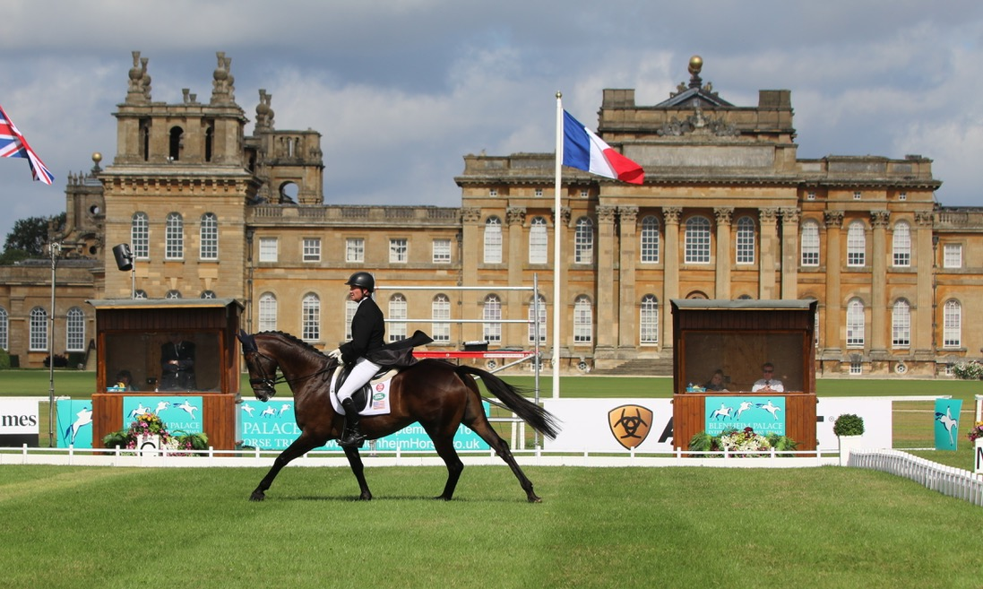 Riding in front of Blenheim Palace, Kurt Martin and Delux Z in the CCI3*. Photo by Samantha Clark.
