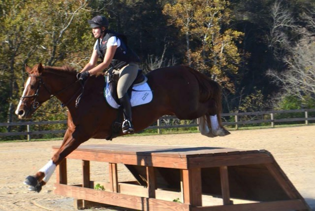 Katherine and Red cross country schooling. Photo by of Kaylen Moon.