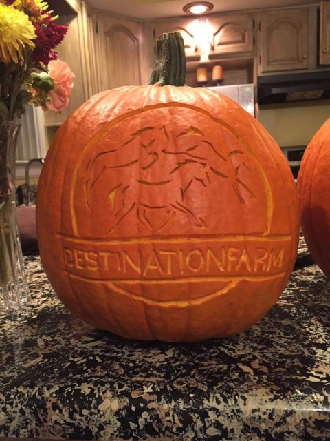 Mad carving skillz. Photo via Destination Eventing's FB page.