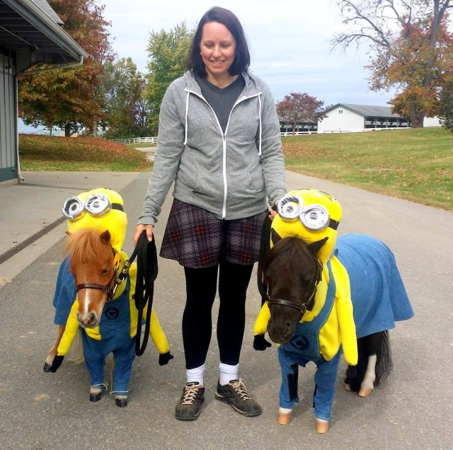 The mini-ons in the Breed Show at KY Horse Park are ready for Halloween! Photo via The Kentucky Horse Park FB page.