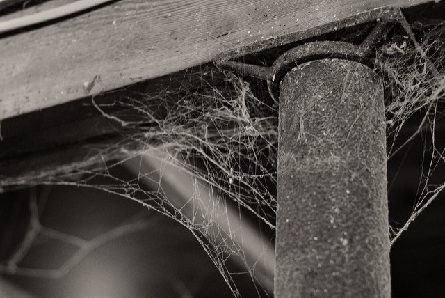 Cobwebs create fire hazards. Clean them out! Photo by Peter Markham/Creative Commons.