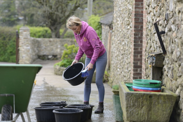 Mary King is very hands-on, feeding the horses and washing out the feed buckets first thing. Photo by Bob Atkins
